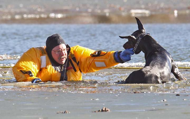Beautiful-Hearted People Who Saved The Lives Of These Animals